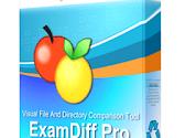 ExamDiff Pro Crack v11.0.1.13 + Keygen [Latest Version]