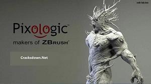 Pixologic ZBrush -